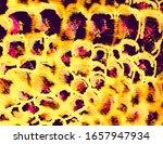 Crocodile Skin. Colorful Mix...
