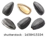 Set Of Sunflower Black Seeds ...
