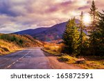 mountain road near the coniferous forest with cloudy morning sky - stock photo