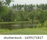 Legion Lake At Custer State...