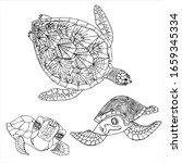 Sea Turtle Coloring Book. Hand...