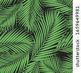 Green Tropical Palm Leaves...