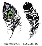 feathers | Shutterstock .eps vector #165968015