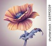Vintage Poppy Flower...