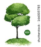 single green tree isolated on... | Shutterstock .eps vector #166005785
