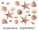 Bright seashells set. clip art...