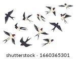 Flying Birds Flock. Cartoon...