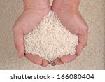 uncooked white rice in the palm ... | Shutterstock . vector #166080404