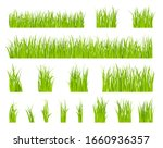 green grass. bio lawn pattern ... | Shutterstock .eps vector #1660936357