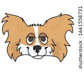 cute cartoon papillon dog breed ...   Shutterstock .eps vector #1661558731
