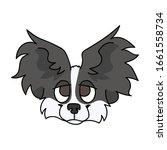 cute cartoon papillon dog breed ...   Shutterstock .eps vector #1661558734