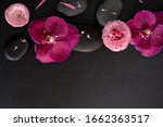 flat lay aromatherapy. close up ... | Shutterstock . vector #1662363517
