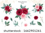 set of floral arrangements of... | Shutterstock .eps vector #1662901261