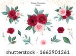 set of floral arrangements of... | Shutterstock .eps vector #1662901261