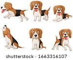 Set Of Beagle Dog Cartoon....