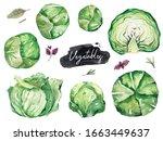 watercolor vegetables set. hand ... | Shutterstock . vector #1663449637