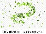 green leaves vector wallpaper.... | Shutterstock .eps vector #1663508944