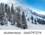 Fantastic Snowshoe Tour On The...