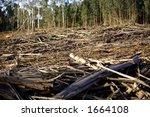 deforestation scene  whats left ... | Shutterstock . vector #1664108
