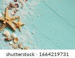Seashells Summer Background....