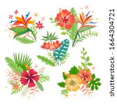 collection of tropical flowers. ... | Shutterstock .eps vector #1664304721