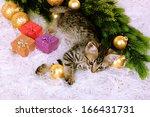 little kitten with christmas... | Shutterstock . vector #166431731