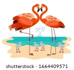 flamingo. realistic tropical... | Shutterstock .eps vector #1664409571