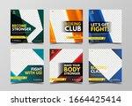 boxing social media banner... | Shutterstock .eps vector #1664425414