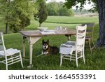 A Table Laid In A Garden  With...