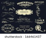 calligraphic design elements | Shutterstock .eps vector #166461437
