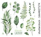 Watercolor Greenery Set.texture ...