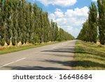 rural road with trees near it board - stock photo