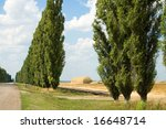 yellow stack and green trees near rural way - stock photo