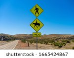 Pedestrian And Horse Crossing...