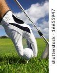 golf tee | Shutterstock . vector #16655947