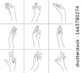 set of woman hands line art.... | Shutterstock .eps vector #1665780274