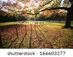 beautiful fall season | Shutterstock . vector #166603277