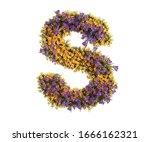 Capital Letter S  3d Rendering...