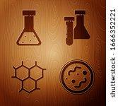 set bacteria  test tube and... | Shutterstock .eps vector #1666352221