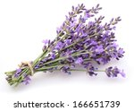 Bunch Of Lavender On A White...