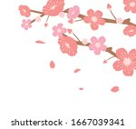 cherry blossoms branches... | Shutterstock .eps vector #1667039341