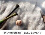 Spring Baseball.  Baseball Bat...