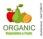 vector illustration of a ripe... | Shutterstock .eps vector #1667138674