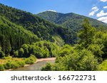 Mountain river and forest on the embankment - stock photo