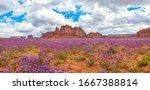 Amazing And Beautiful Panoramic ...