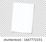 vector school note book paper... | Shutterstock .eps vector #1667772151