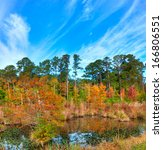 Mississippi Swamp In Fall Alon...