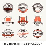 vector salmon brown and orange... | Shutterstock .eps vector #1669062907