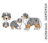cute cartoon australian...   Shutterstock .eps vector #1669529314