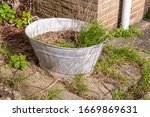 Metal Tub Filled With Earth An...